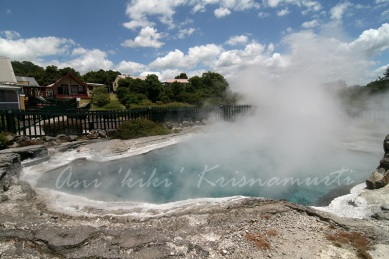 whakarewarewa,the gathering place for the war parties of Wahiao, often abbreviated to Whaka by locals) is a geothermal area within Rotorua city