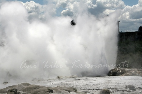 Pohutu (big splash) geyser