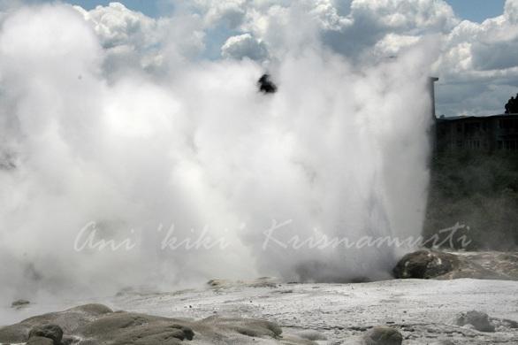 Pohutu (big splash) geyser