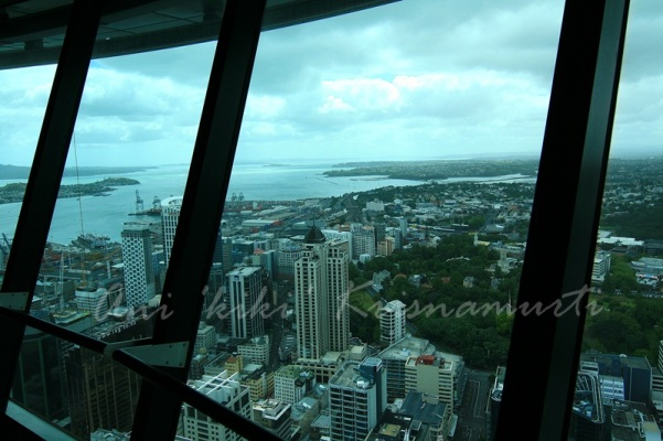 auckland seen from observation deck,sky tower