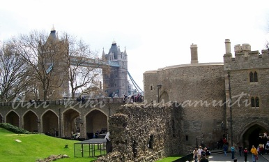 tower bridge seen from tower of london