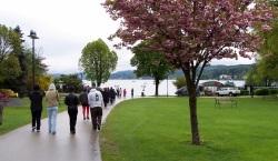 Wörthersee-lake worth