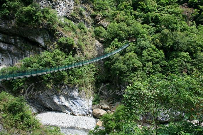 suspesion bridge