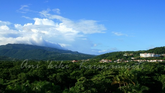 el yunque seen from rio mar