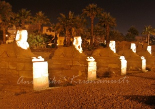 Hundreds of sphinxes