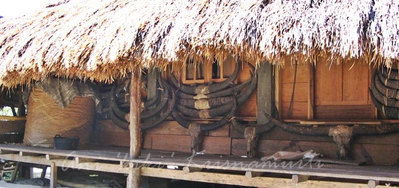 Sumba-house2