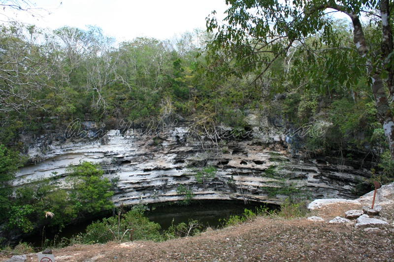 cenote sagrado-sacred cenote