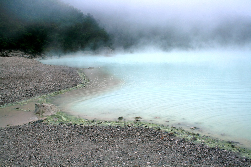 kawah putih- white crater