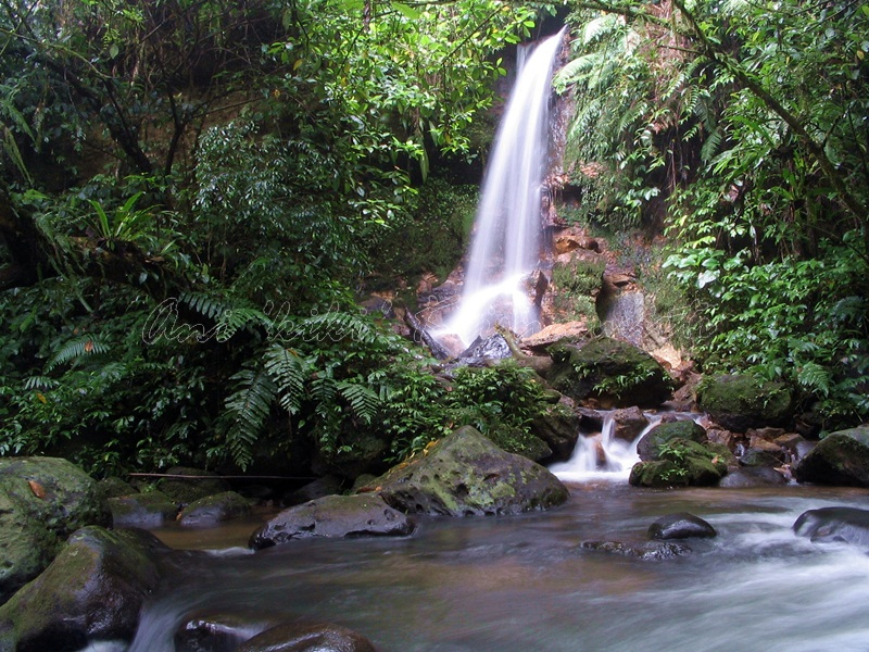 sukabumi-halimun national park