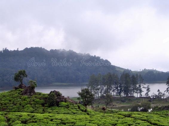 lake patenggang