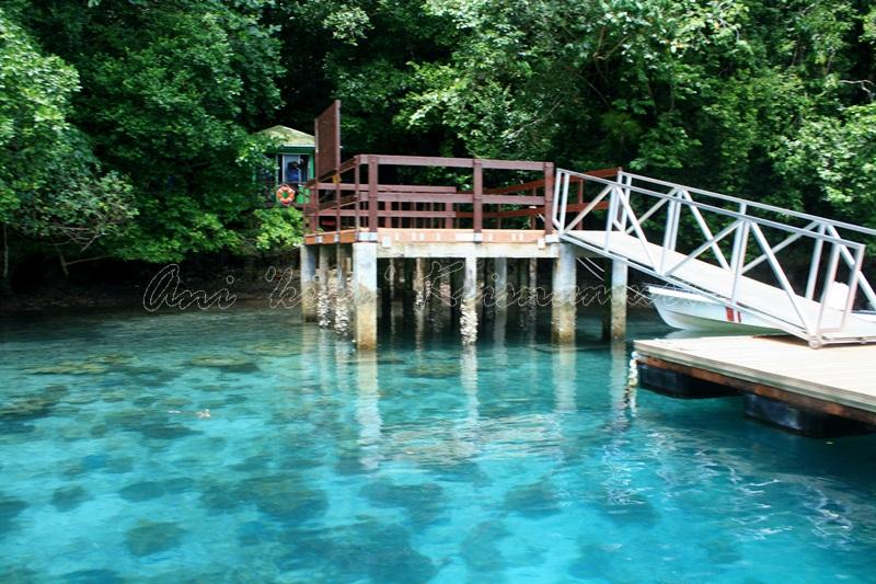 4.JELYFISH LAKE_entrance