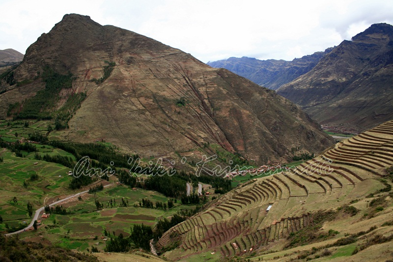 PISAC-terrace farmland