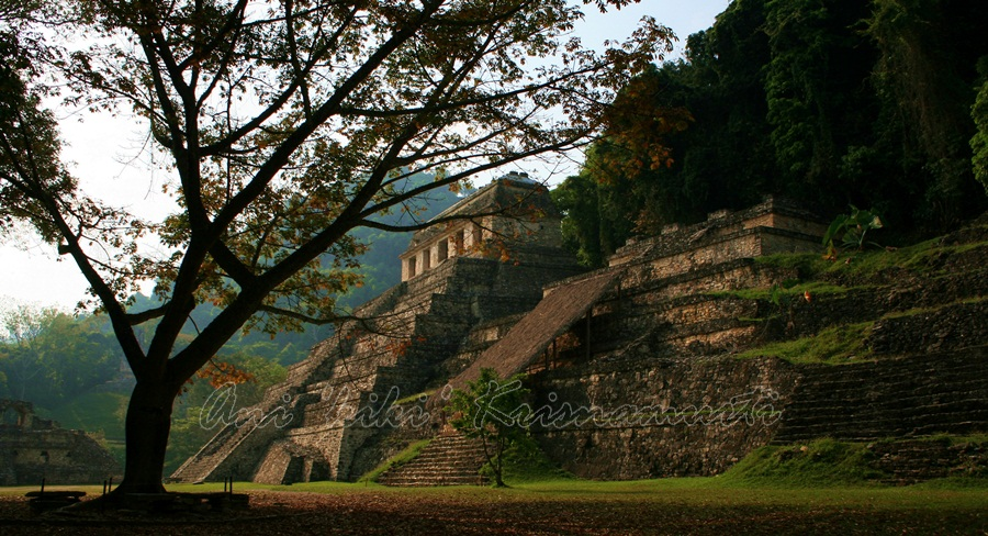 beautiful palenque