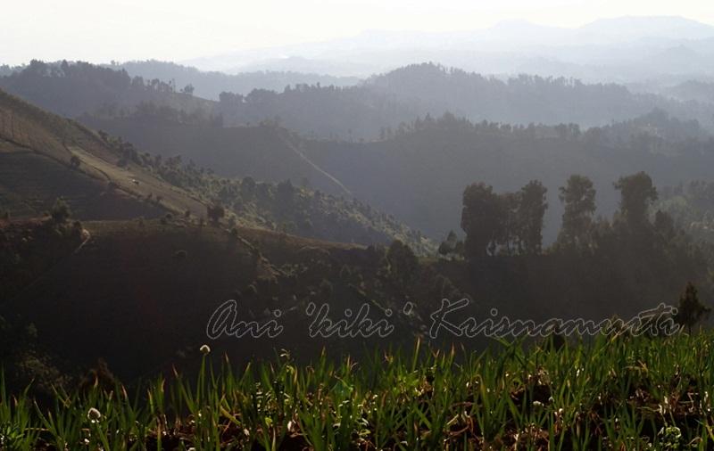 lumajang, B29 peak