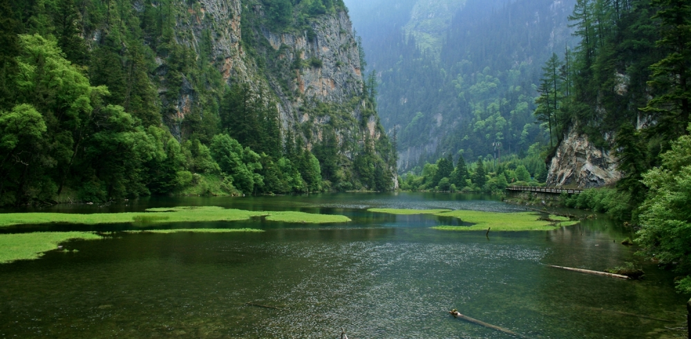 swan lake, jiuzhaigou, china