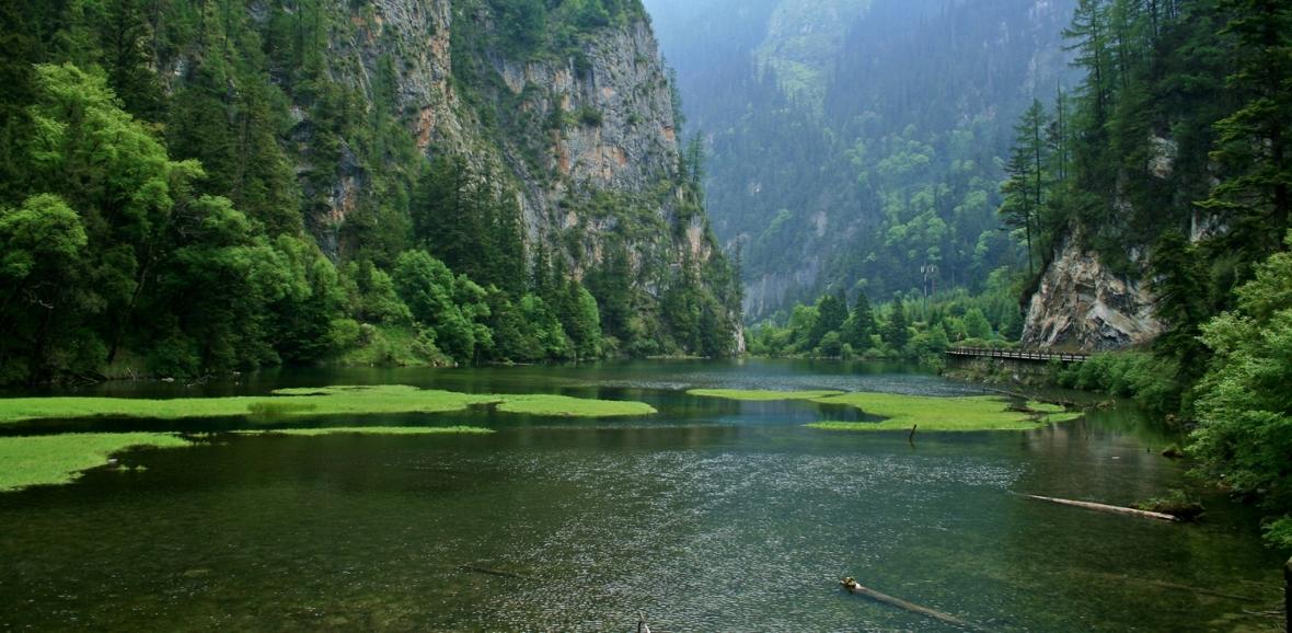 swan lake, jiuzhaigou, china